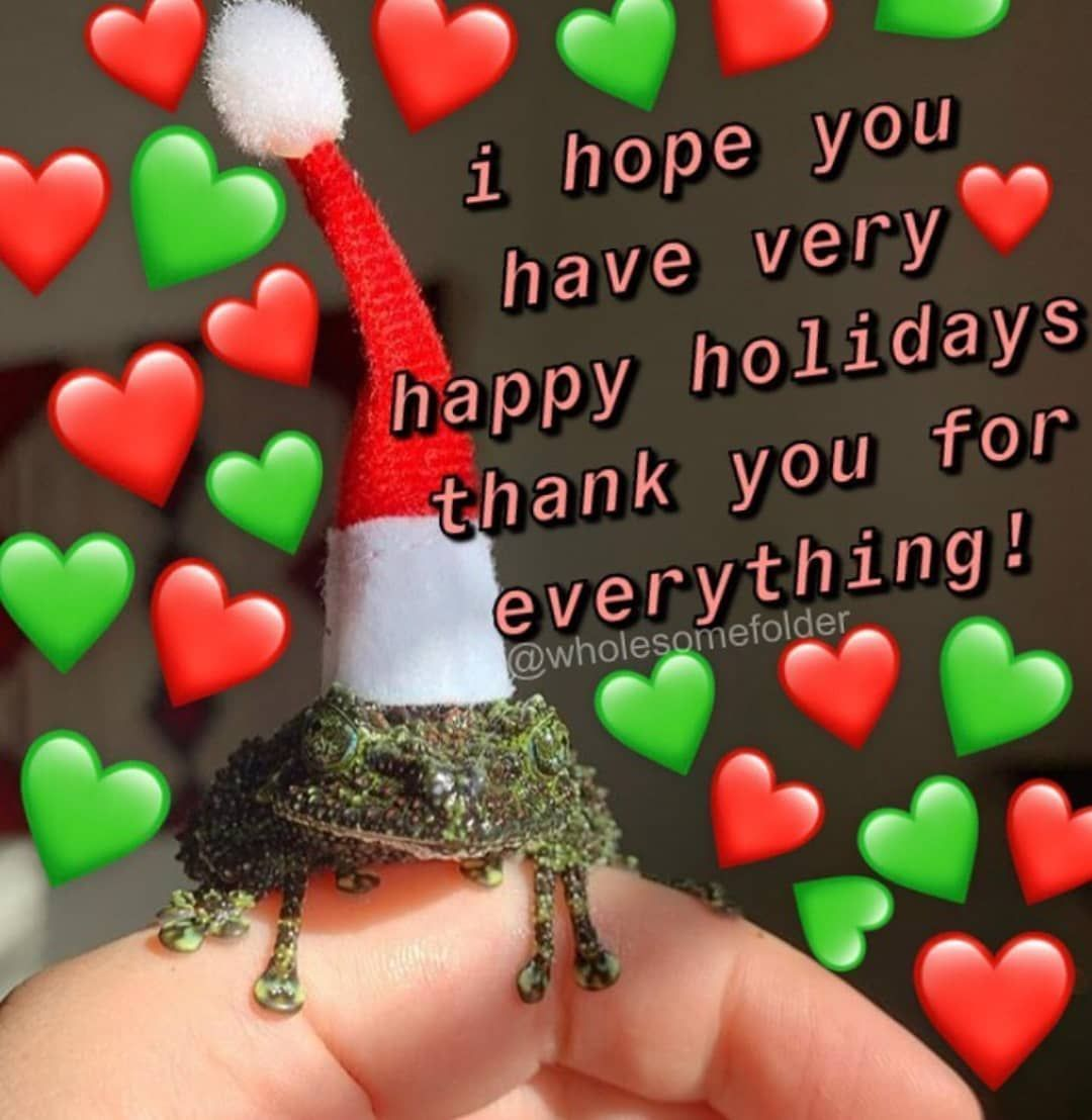 Merry Christmas Or Whatever You Celebrate Wholesomemem Merry Christmas Merry Christmas