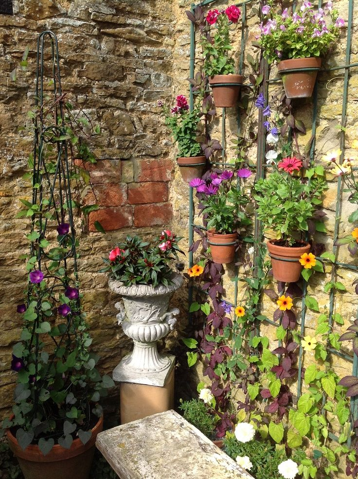 Trellis Garden Ideas Part - 25: Pots Attached To Trellis In Walled Garden.