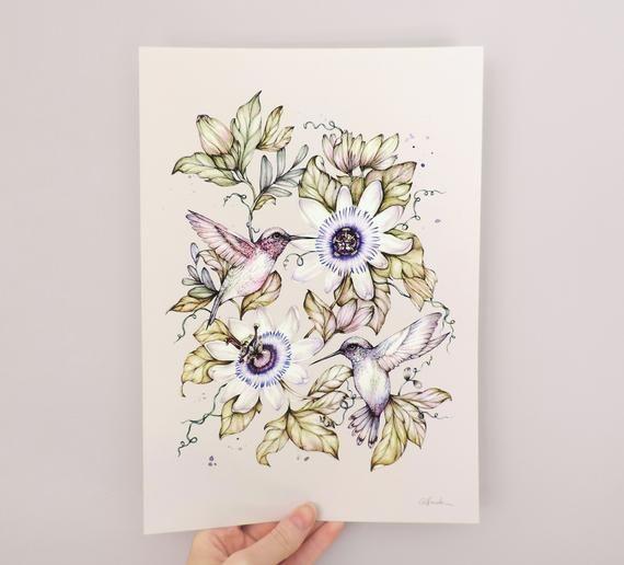 Watercolour Hummingbird Passionflower Botanical Bird Illustration