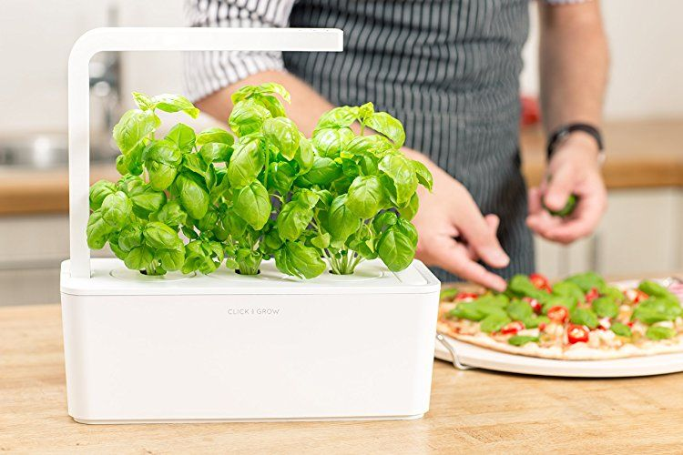 Indoor Herb Garden With Images Herb Garden Kit Fresh 400 x 300