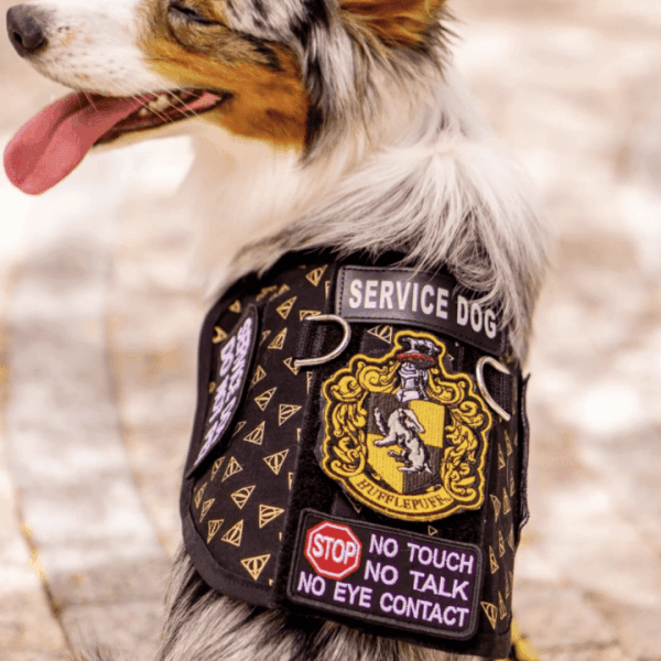 Custom Patterned Vest or Cape The Atomic Hound Customize