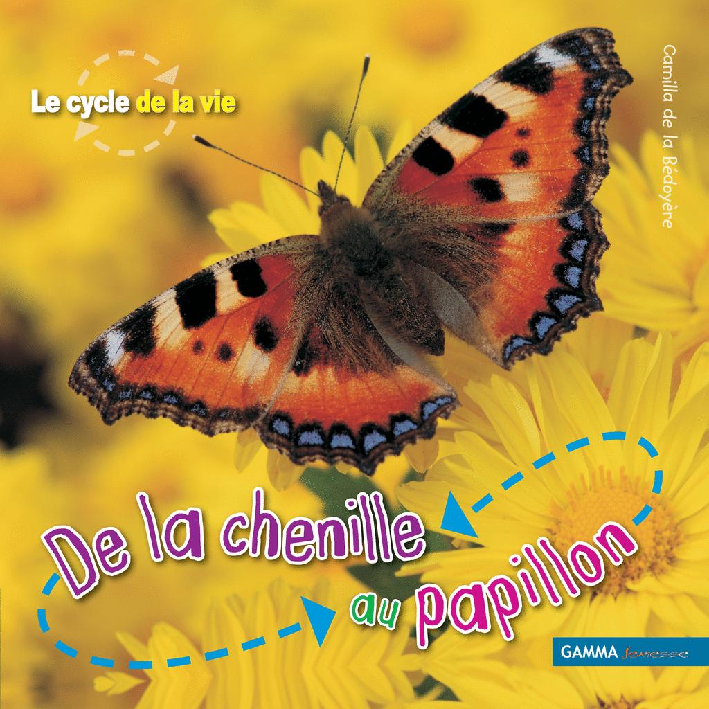 chenille papillon chenille papillon