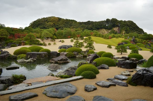 jardin japonais paysage