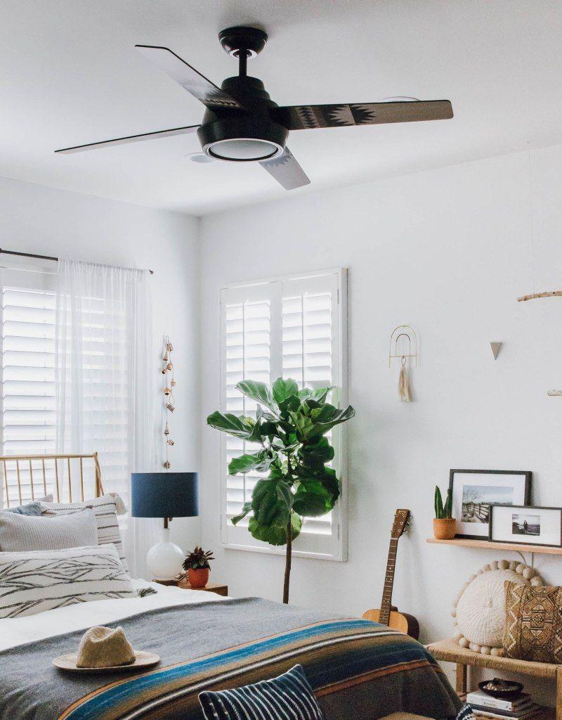 Modern Ceiling Fan Anita Yokota Living Room Ceiling Living