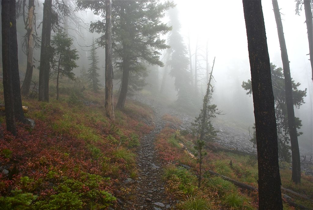 rainy mountain scene | under baldy mountain roadless area hiking tags baldy mountain roadless ...