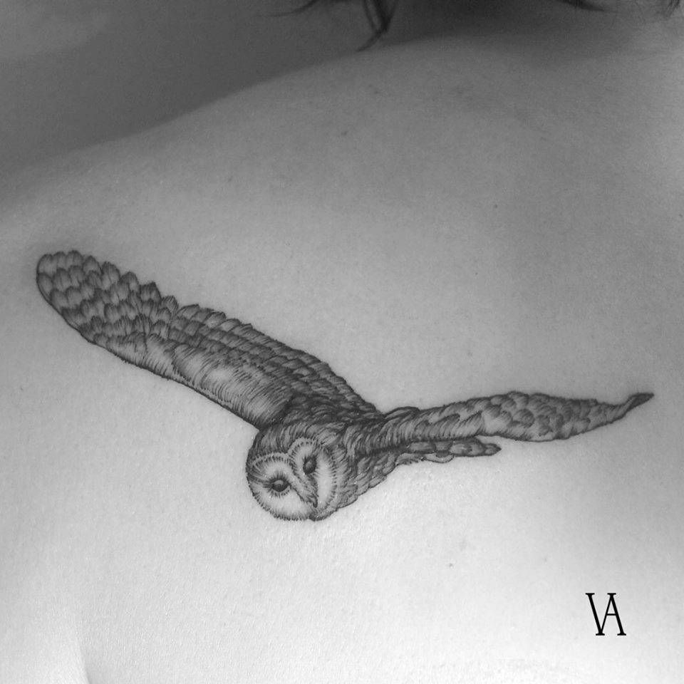 Flying owl tattoo on the left shoulder blade. Tattoo