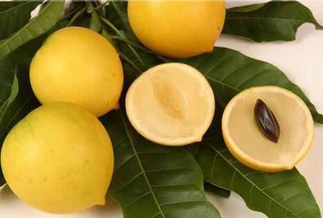 Abiu fruit aka Bacupari (Hawaii) | Fruits