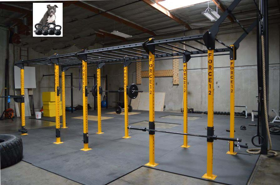 Post free standing monkey bar rig squat