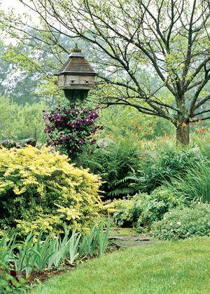 Love the birdhouse.