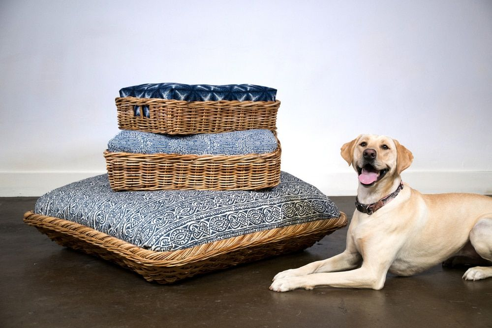 Puppy Pallet by House of Morrison Dog bed, Luxury dog