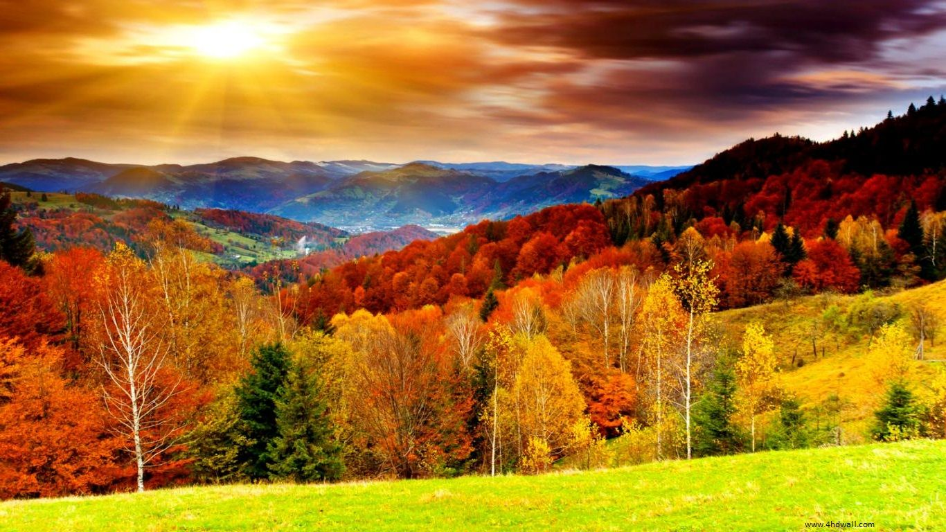 best pictures of fall season high definition autumn season