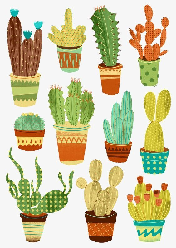 Potted Cactus, Potted, Cactus, Illustration PNG Transparent Clipart Image and PSD File for Free Download