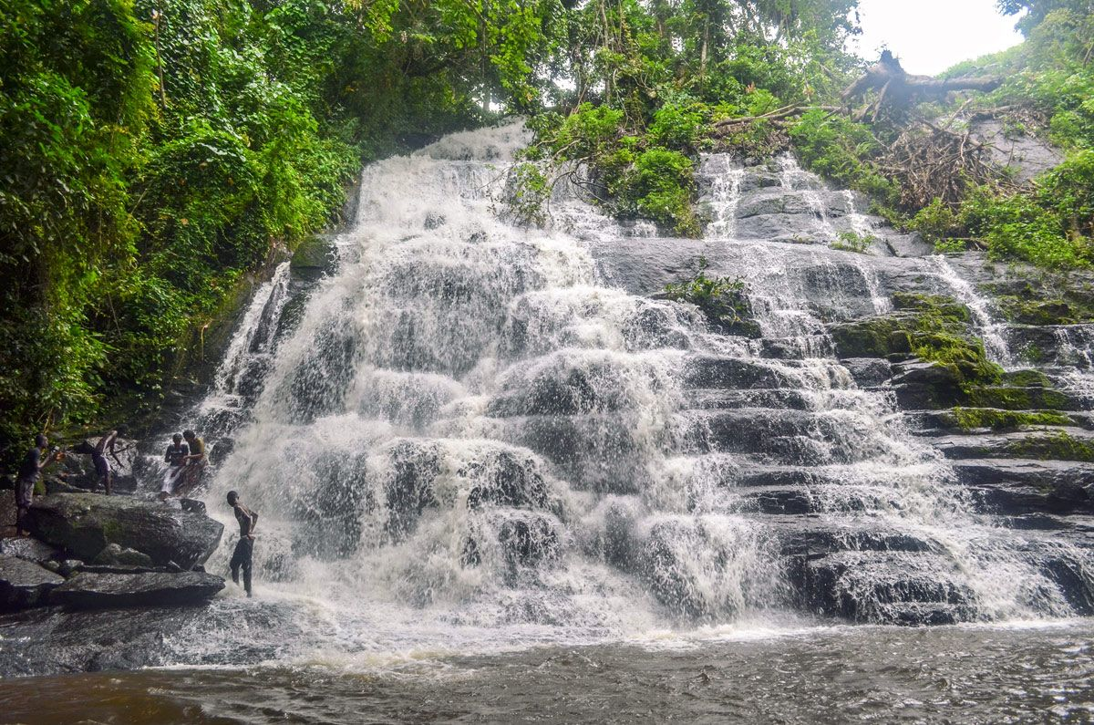 La Cascade Waterfall in the bamboo forest Of Taï National Park ...