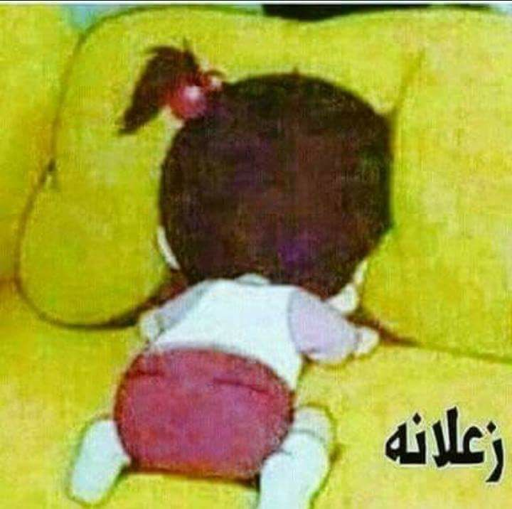 Desertrose زعلانة Funny Comments Funny Arabic Quotes Funny Picture Quotes