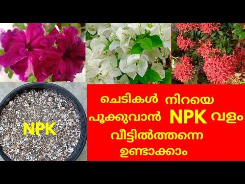 how to make npk fertilizer at home
