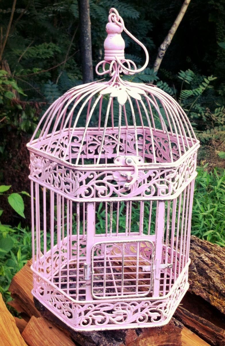 the birdcage in Ava's room