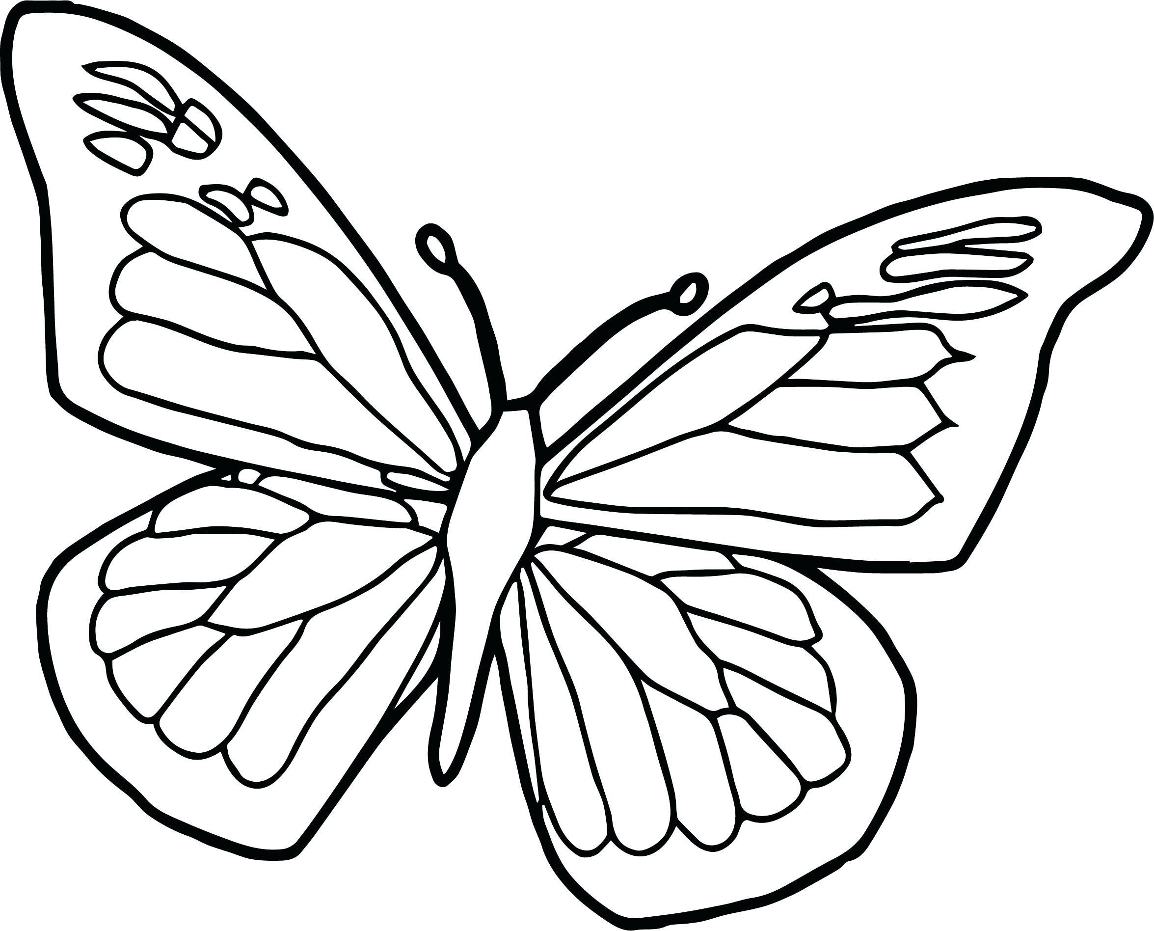 10 Butterfly Coloring In Page Butterfly Coloring Page Butterfly Coloring Butterfly Printable