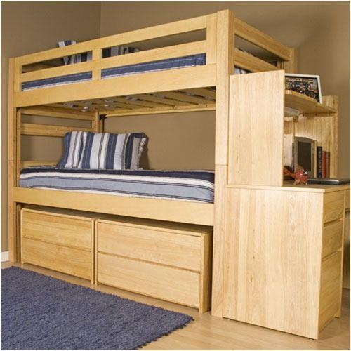 Best University Loft Graduate Series Twin Xl Bunk Bed Natural 400 x 300