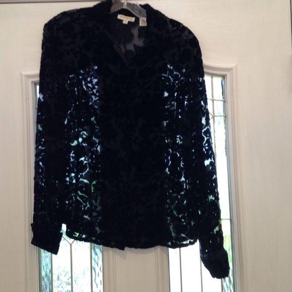 Vintage burn-out velvet blouse Perfect condition rayon/silk velvet long-sleeve blouse from Ann Taylor Ann Taylor Tops Blouses