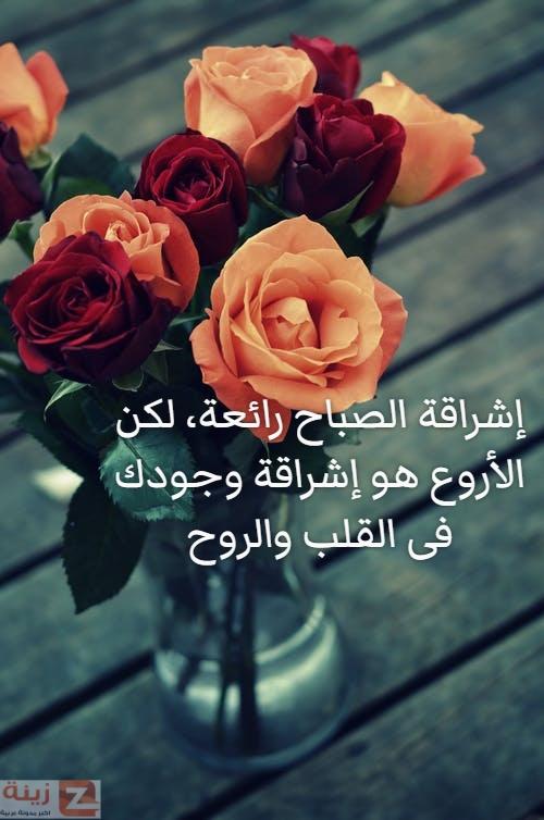 صور صباح الحب والاشتياق صباح الحب والشوق صباح الحب حبيبتي Zina Blog Flowers Plants Rose