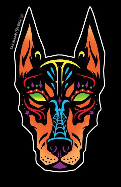 Sugar skull doberman