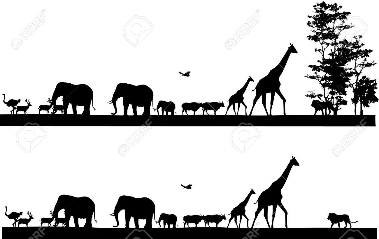 Paint By Number Wall Murals African Lion Silhouettes Google Search Silhouette