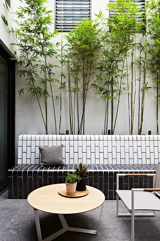 jardn de hierbas patio interno pequeo y de diseo moderno