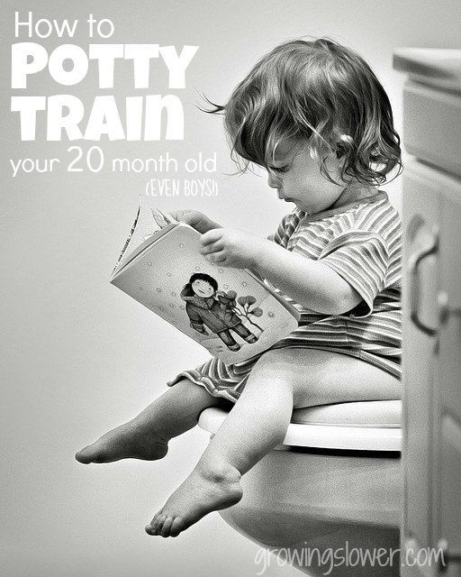 How I Potty Trained My 20 Month Old Boy