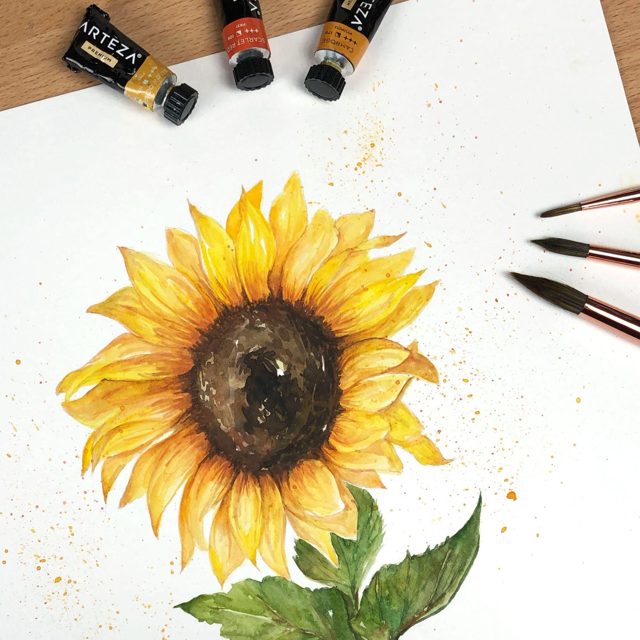 Watercolor Sunflower Painting Art Artist Artwork Watercolor