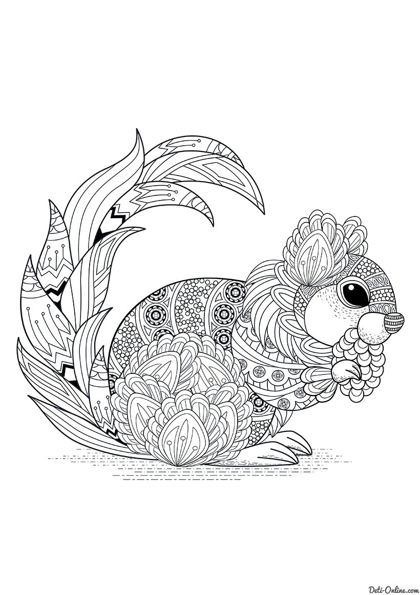 Раскраска Белка Squirrel Coloring Page Fall Coloring