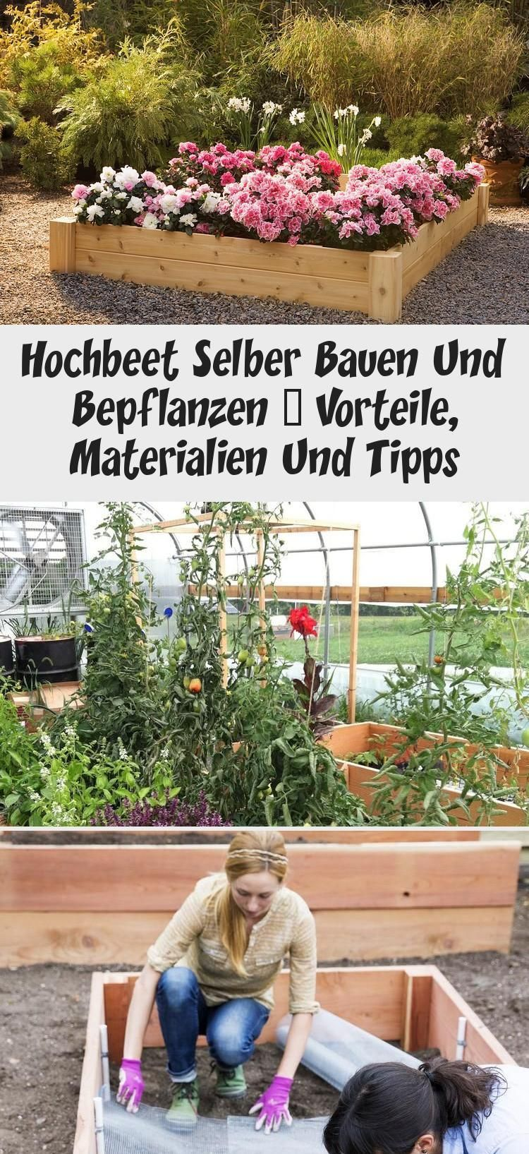 Garden Hochbeet Bauen Und Selbst Pflanzen Vorteile Materialien Und Tipps In 2020 Plants