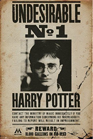 "Harry Potter Poster Undesirable No. 1 (24""x36"")"