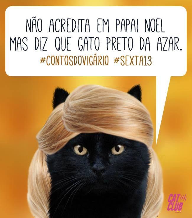 Gato Preto Não Dá Azar Dá Amor ótima Sexta Feira 13 Cat