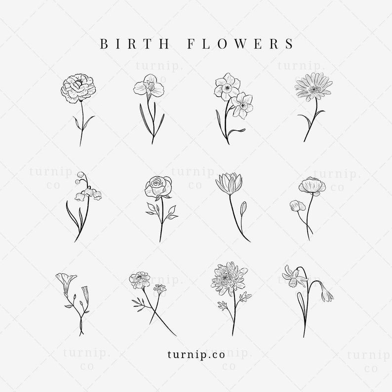 Birth Flower Clipart, Rose, Iris, Lily Clipart, Bi