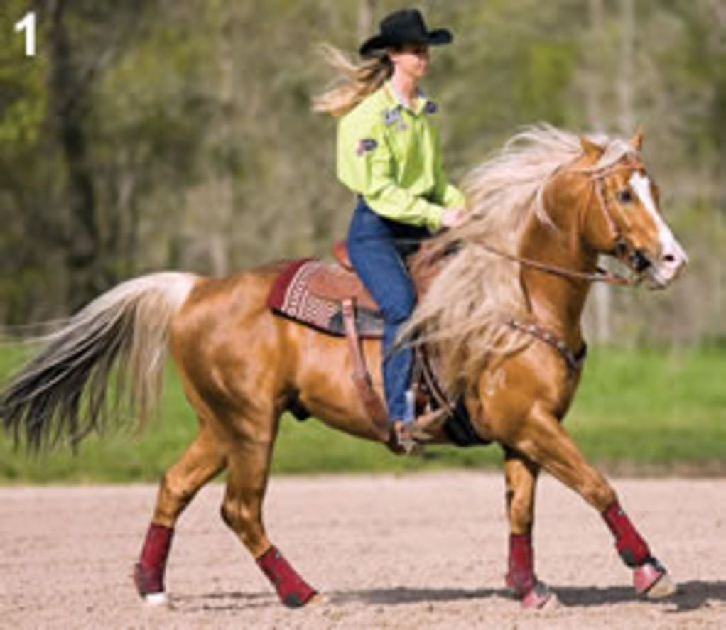 Softening Exercise for Your Speed Horse | Expert advice on horse care and horse riding