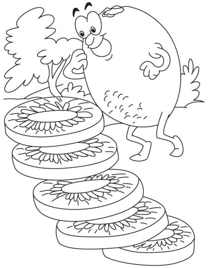 Kiwi Coloring Page Download Free Kiwi Coloring Page For Kids