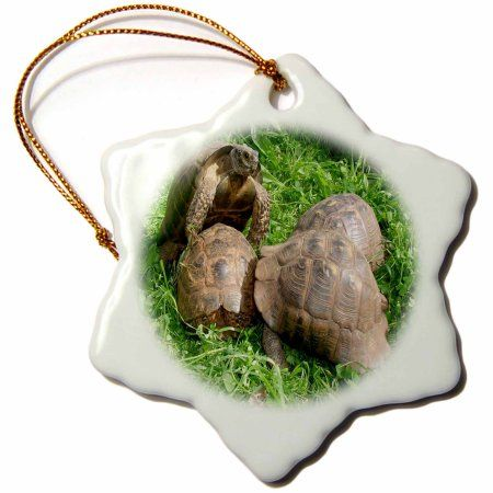 3dRose Bullied into Submission - Mating Tortoises, Snowflake Ornament, Porcelain, 3-inch