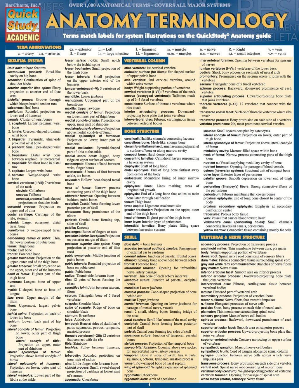 Anatomy Terminology Study Guide Ebook Rental Medical Terminology Study Medical Coding Medical Terminology