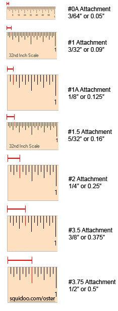 49+ 2 inch clipper guide ideas