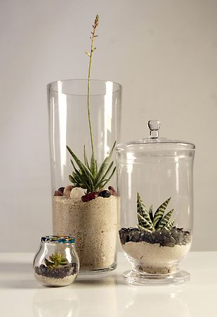 Sand With Rocks On Top For Tall Vase Succulentes Deco Idee Deco