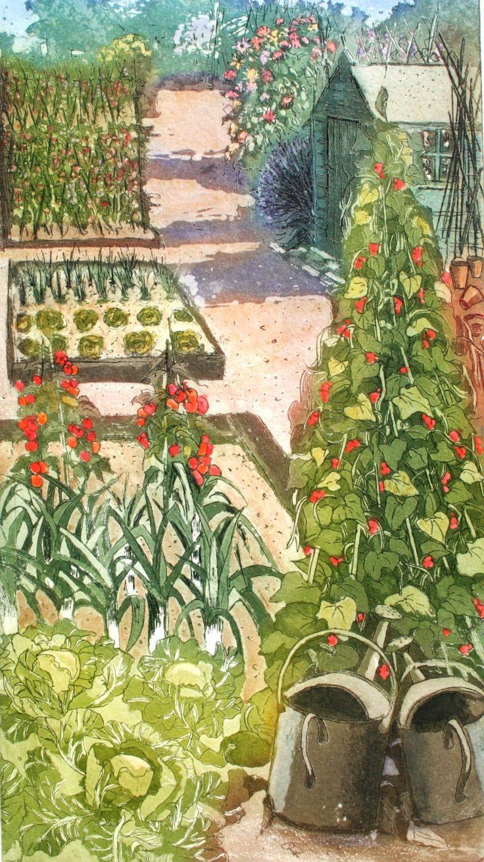 Allotment The Perfect Plot Etching And Aquatint With Watercolour En 2020 Illustration De Jardin Peinture De Jardin Dessin Jardin