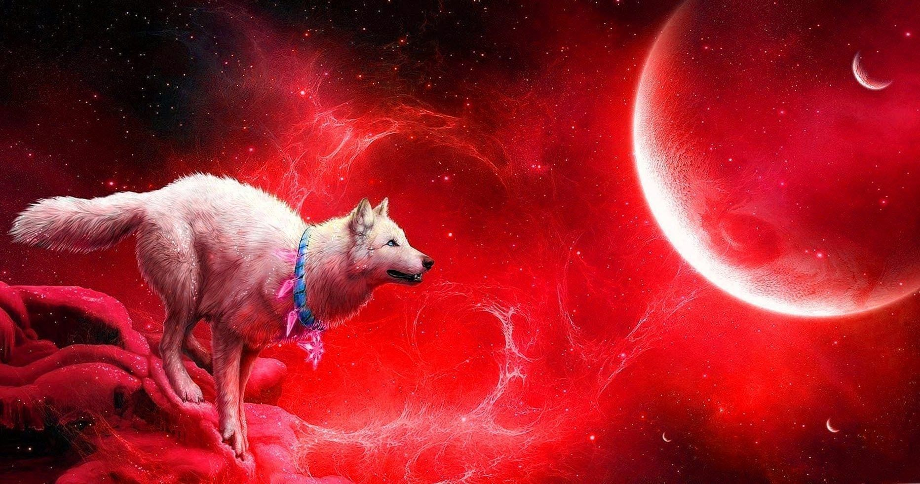 Blue Moon Wolf Wallpapers Blue Moon Wolf Wallpapers Wolf Wallpaper Blue Moon Three Wolf Moon