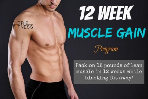 one of the best 12 week muscle gain programs for both men