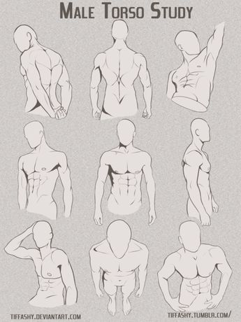 How to Art | drawing | Pinterest | Hombre musculoso, Anatomía y Dibujo