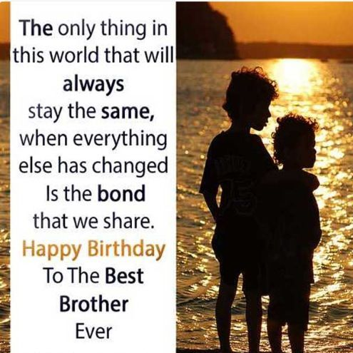 Happy Birthday Little Brother Quotes Quotes