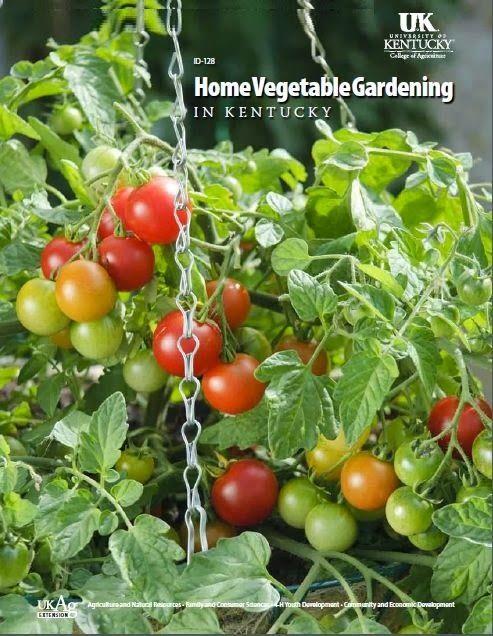 Home Gardening #Book #PDF - Free Urdu #Books, PDF Books In Urdu ...