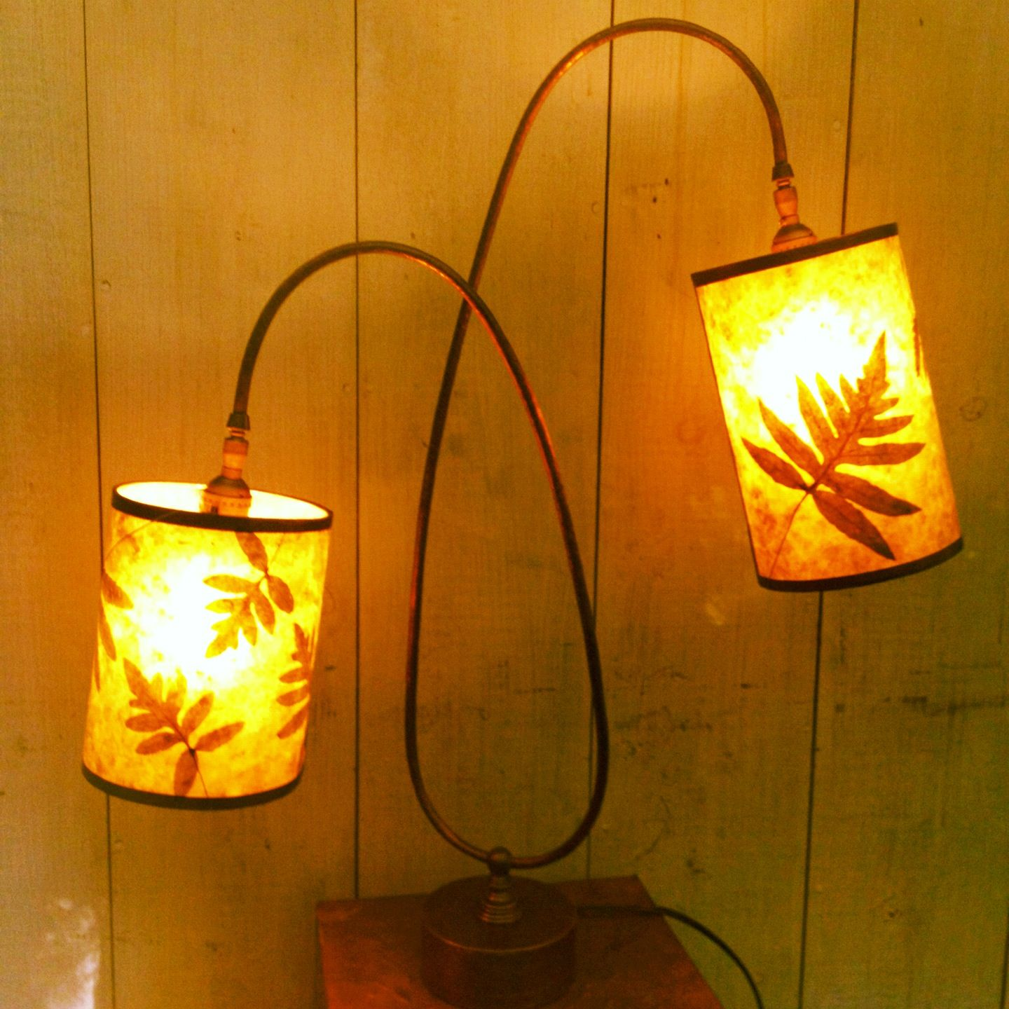 Double Lamp Green Mica With Sensitive Ferns One Of A