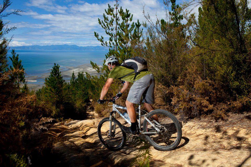 Kaiteriteri Mountain Bike Park - New Zealand