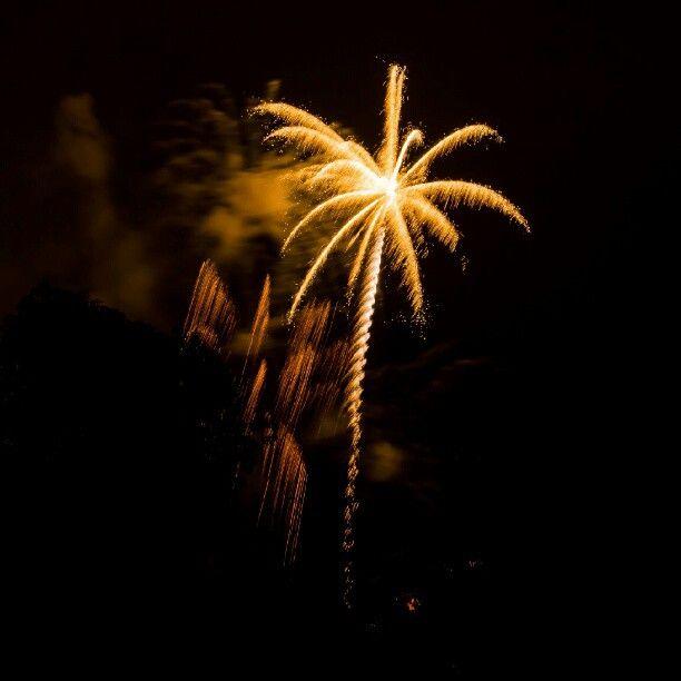 4th Of July Fireworks Looks Like A Palm Tree Right Photooftheday Picoftheday Elcajon Sandiego California So 4th Of July Fireworks Fireworks 4th Of July