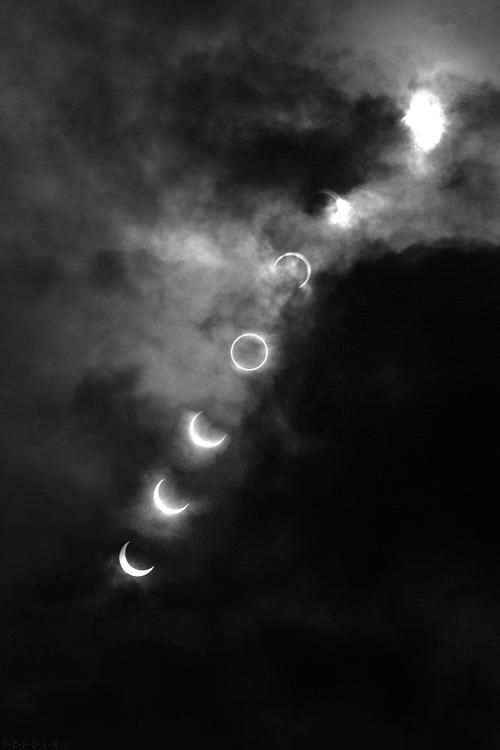 black night white moon